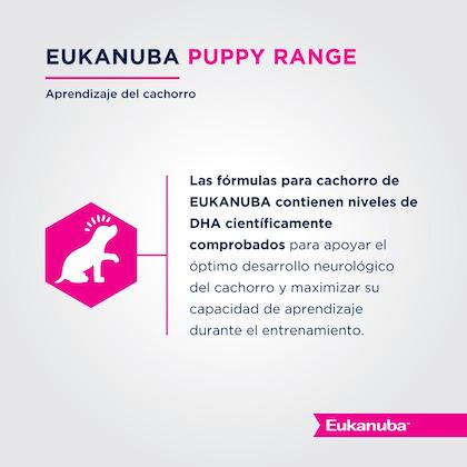 Eukanuba Puppy Medium Breed - Cachorro Talla Mediana