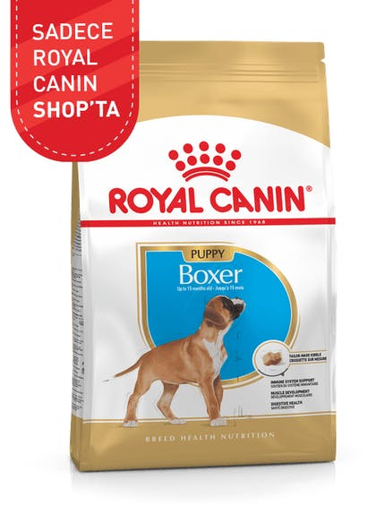 Royal Canin Yavru Köpek Maması Boxer Puppy