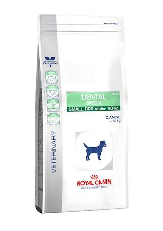 Dental Small Dog