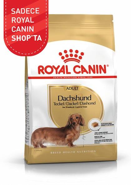 Royal Canin Köpek Maması Dachshund Adult