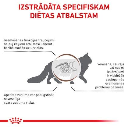 RC-VET-DRY-CatGastro-CV-Eretailkit-2-lv_LV