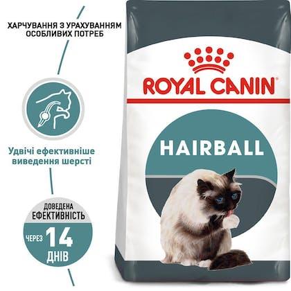 RC-FCN-Hairball_1-UA.jpg