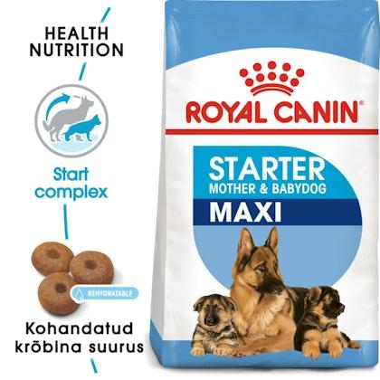 RC-SHN-PuppyMaxiStarter-SHN PUPPY_008_ESTONIA-ESTONIAN
