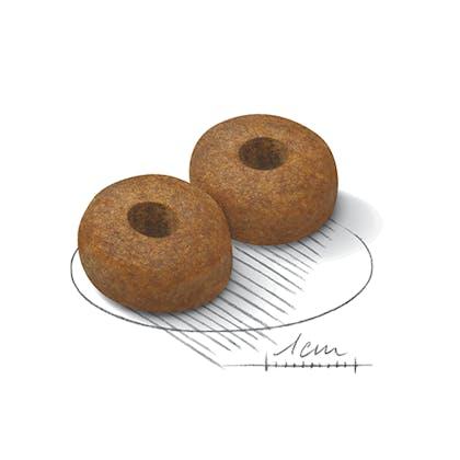 AR-L-Croqueta-Maxi-Ageing8+-Size-Health-Nutrition-Seco