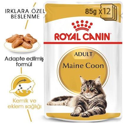 Royal Canin Maine Coon Adult Kedi Maması Yaş Mama 7
