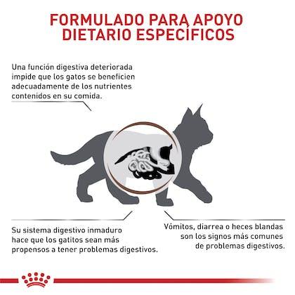 VHN GASTROINTESTINAL KITTEN COLOMBIA 2
