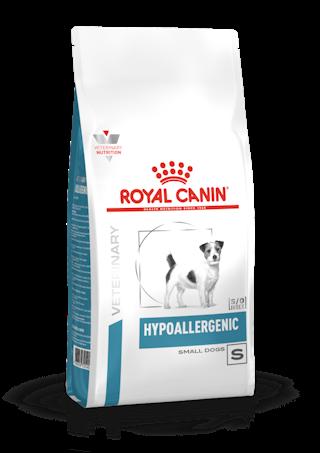 Hypoallergenic Small Dog