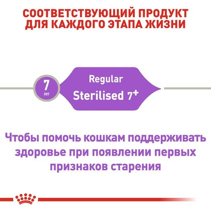 RC-FHN-Sterilised7_2-RU.jpg