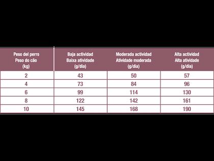 AR-L-Tabla-Racionamiento-Mini-Indoor-Adult-Size-Health-Nutrition-Seco