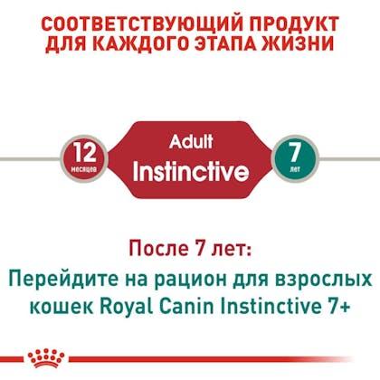 RC-FHN-Wet-InstinctiveJelly_2-RU.jpg
