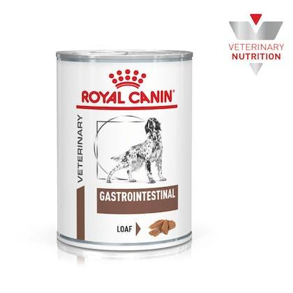 VHN-BrandFlagship-Hero-Images-Gastrointestinal 400g Dog Wet-B1