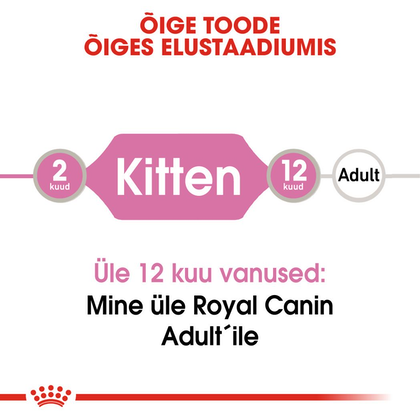 RC-FHN-KittenInstinctiveJelly-CV-Eretailkit-1-et_EE