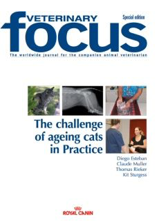 The challenge of ageing cats in Practice