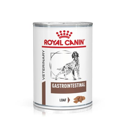VHN-eRetail Full Kit-Hero-Images-Gastrointestinal 400g Dog Wet-B1