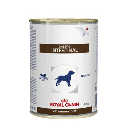 GASTRO INTESTINAL CANINE WET