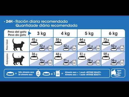 AR-L-Tabla-Racionamiento-Indoor-longhair-Feline-Health-Nutrition-Seco