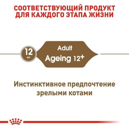 RC-FHN-Wet-Ageing12Gravy_2-RU.jpg