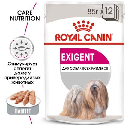 RC-CCN-Wet-Exigent-MV-Eretailkit_rus