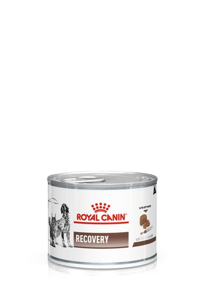 VHN-GASTROINTESTINAL RECOVERY CAT DOG LOAF CAN-PACKSHOT