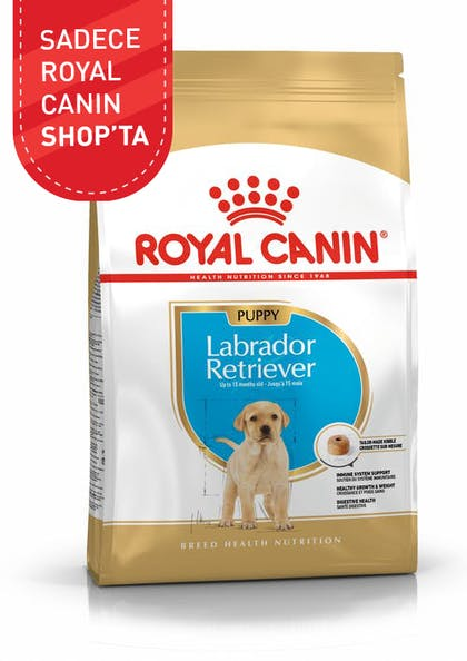 Royal Canin Yavru Köpek Maması Labrador Retriever Puppy