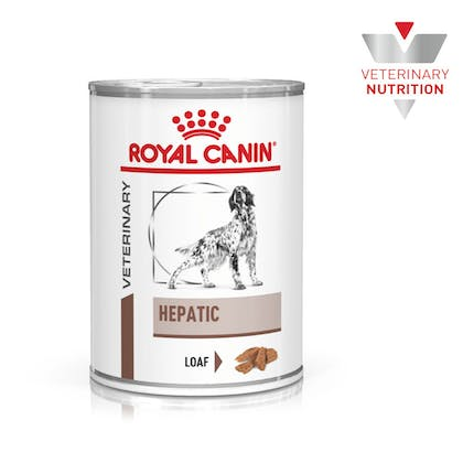 VHN-BrandFlagship-Hero-Images-Gastrointestinal Hepatic 420g Dog Wet-B1