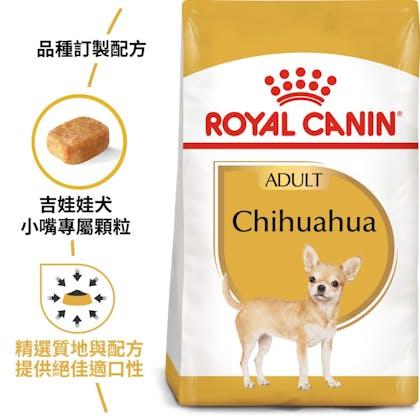 BHN_Chihuahua