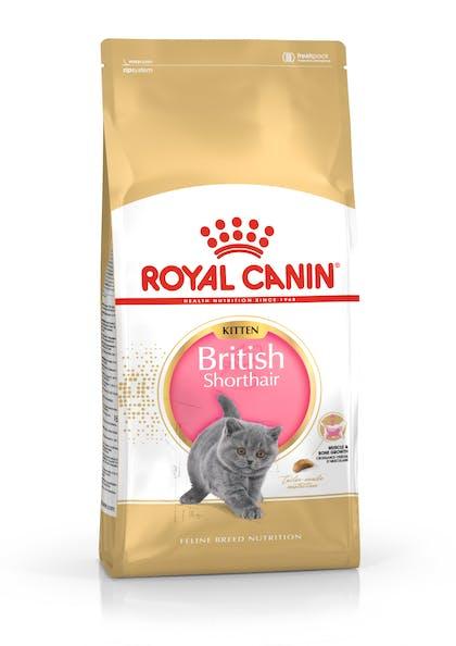Πλήρης τροφή για γατάκια φυλής British Shorthair (μέχρι 12 μηνών