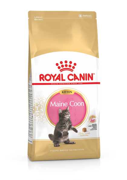 FBN2016_PACKSHOT_MAINE COON_KITTEN