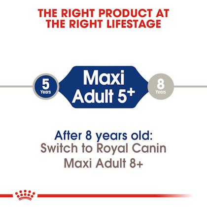 SHN-AdultMaxi5-CV-EretailKit-1