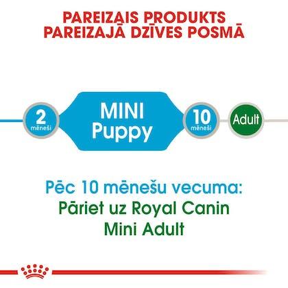 RC_SHN_Wet_MiniPuppy_CV_Eretailkit_lv_LV (1)