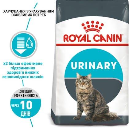 RC-FCN-Urinary_1-UA.jpg