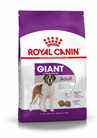 Giant Adult