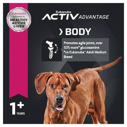 Eukanuba™ Adult Large Breed Dry Dog Food