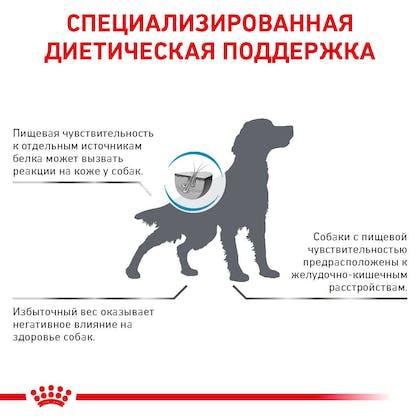 RC-VET-DRY-DogHypoMC-Eretailkit-B1_8