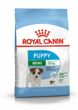Mini Puppy