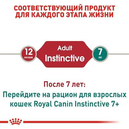 RC-FHN-Wet-InstinctiveGravy_2-RU.jpg