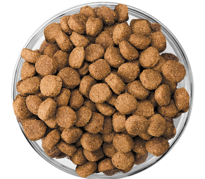 Eukanuba - Kibble Bowl Puppy Medium & Large Breed