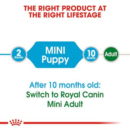 SHN-PuppyMini-CV-EretailKit-1