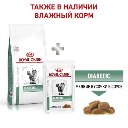 9_RC-VET-DRY-CatDiabetic