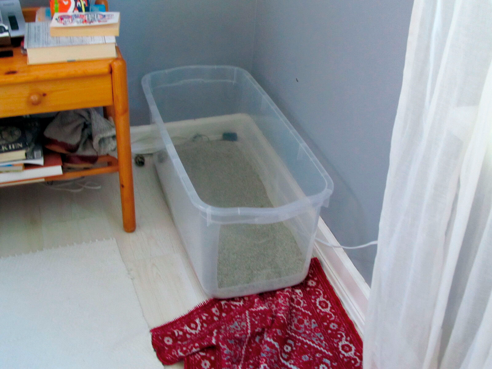 Figure 4. Litter boxes must be distributed throughout the home and should be large and clean. Individual cats have different preferences for type and depth of litter, but sand-like or fine clay substrates are readily accepted by most cats.