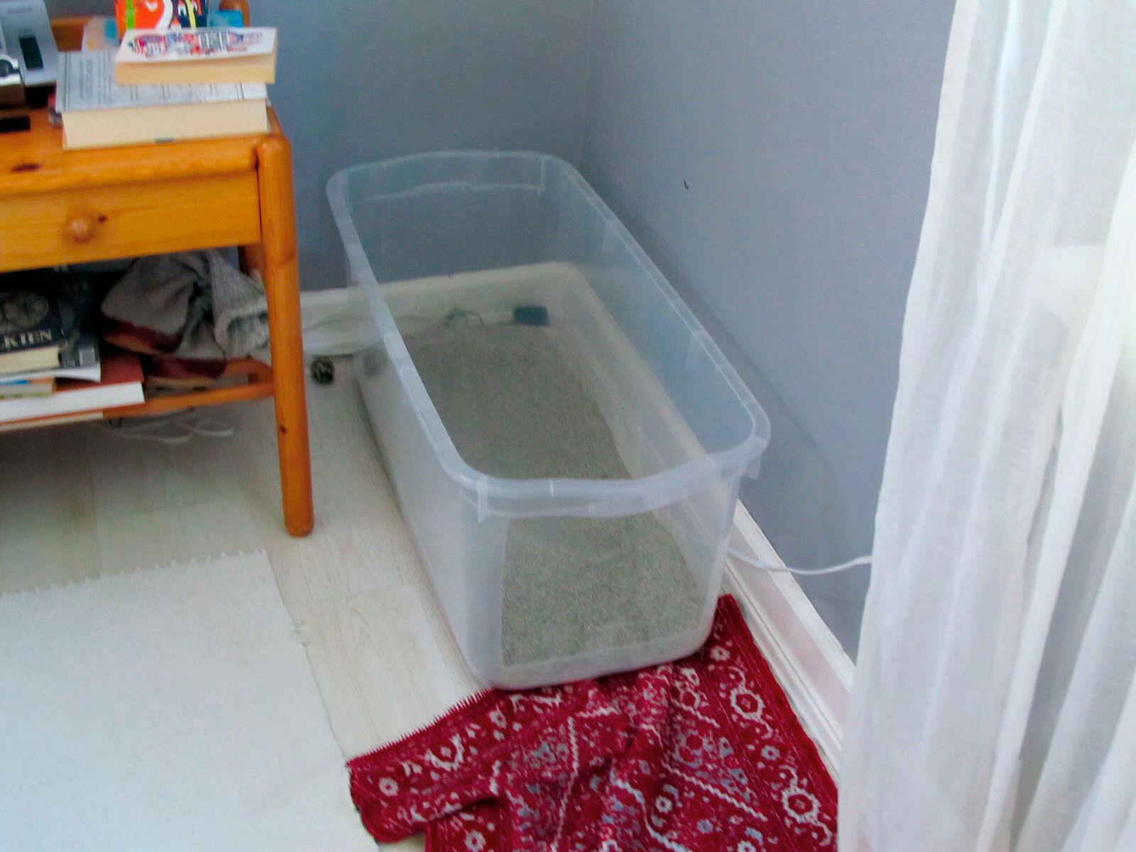 Figura 4. Le vaschette per lettiera devono essere distribuite in tutta la casa ed essere grandi e pulite. Ogni singolo gatto ha preferenze diverse per il tipo e la profondità della lettiera, ma i substrati simili alla sabbia o all'argilla fine sono prontamente accettati dalla maggior parte dei gatti.
