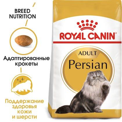 Persian Adult Dry hero