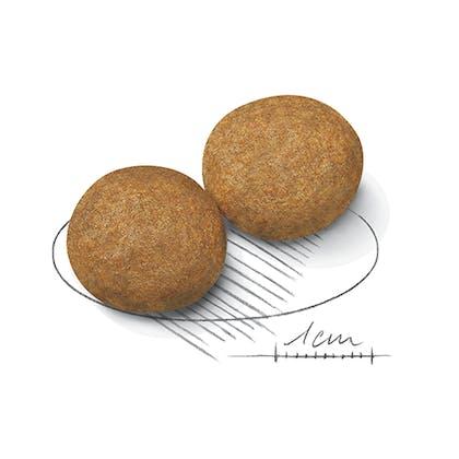AR-L-Croqueta-Medium-Adult-Size-Health-Nutrition-Seco