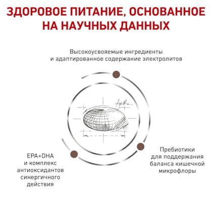 RC-VET-DRY-DogGastroHF-BrandFlagship_rus4