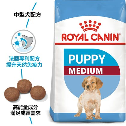 SHN_PuppyMedium