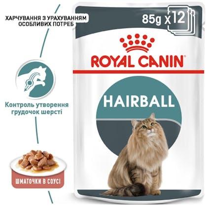 RC-FCN-Wet-HairballCareGravy_1-UA.jpg