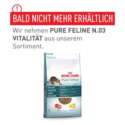DACH-Transfer_pictures_Pure_Feline-3