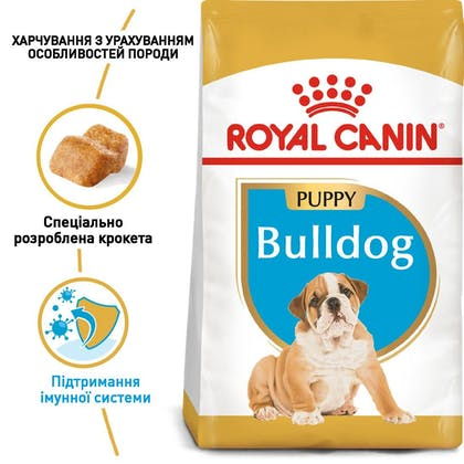 RC-BHN-PuppyBulldog_1-UA.jpg