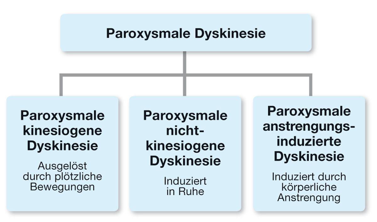 Bei Hunden werden verschiedene Formen paroxysmaler Dyskinesien beschrieben. Es kann sinnvoll sein, diese nach auslösender Ursache zu klassifizieren.
