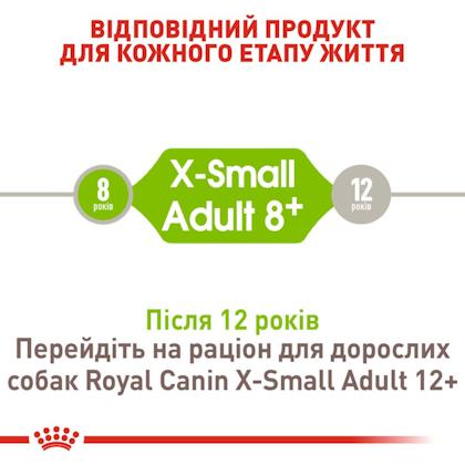 RC-SHN-AdultXSmall8_2